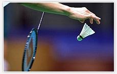 Badminton  w Głogowie, Badminton  Głogów